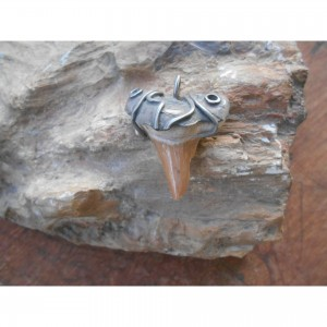 """Silver """"shark tooth"""" pendant jewelry"""